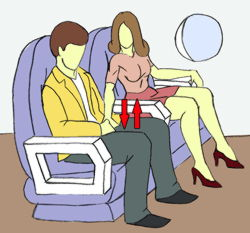 Airplane Sex Guide
